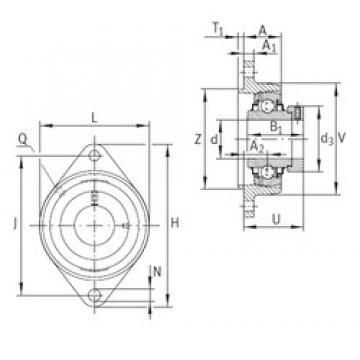 INA RCJTZ25 bearing units