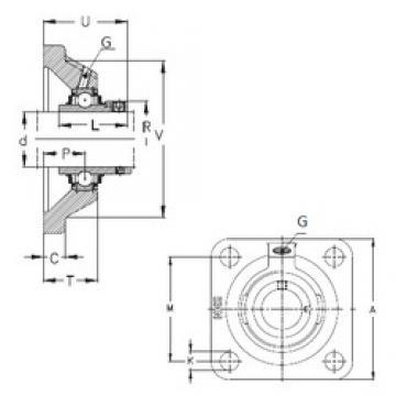 NKE RCJ100 bearing units