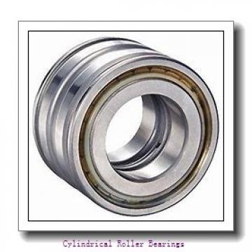 55 mm x 90 mm x 26 mm  NSK NN3011MBKR cylindrical roller bearings