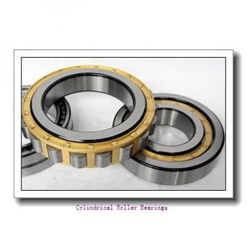 30 mm x 55 mm x 13 mm  NKE NU1006-E-MPA cylindrical roller bearings