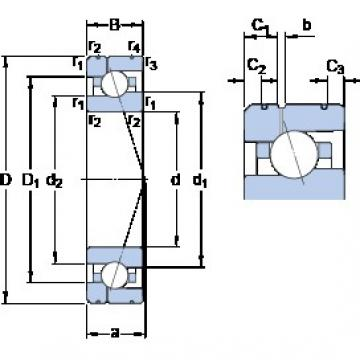 30 mm x 55 mm x 13 mm  SKF 7006 CE/HCP4AL1 angular contact ball bearings